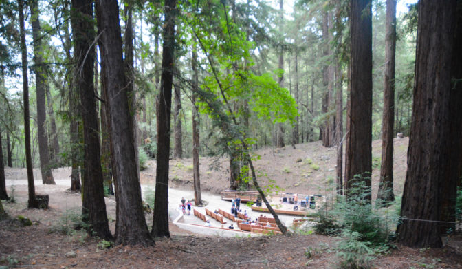 The terraced seating and stage of the Redwood Grove Theater surrounded by lush redwoods.